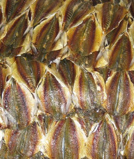 Cá chỉ vàng