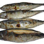 cá-nục-nướng