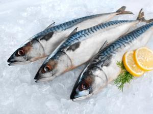 Cách bảo quản giúp cá tươi cả năm