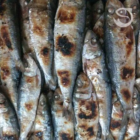 Cá trích nướng Quỳnh Lưu-Nghệ An