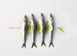 Ăn các loại cá trích giảm nguy cơ mắc ung thư gan